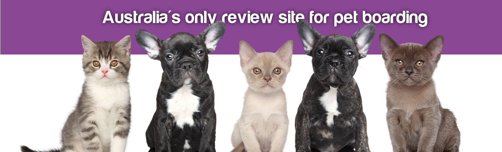 PetStayAdvisor Australia's only review site for pet boarding