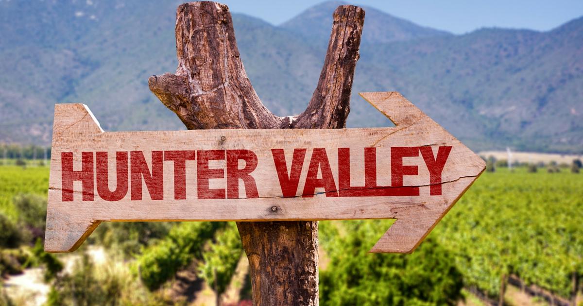 Dog Day Hunter Valley