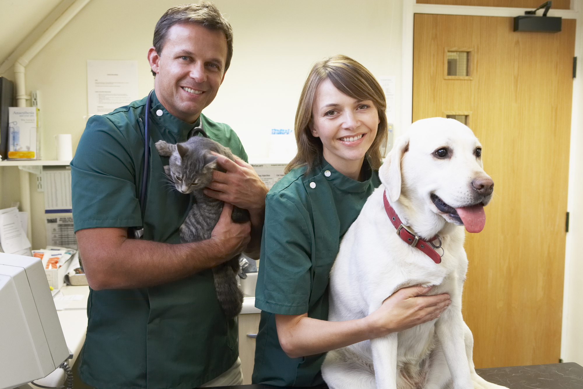 vet-male-female-with-cute-dog