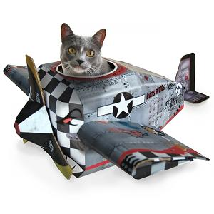 cat-plane-playhouse-card